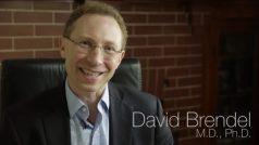 Dr. David Brendel, MD, PhD